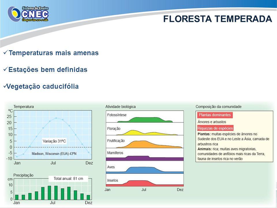 Temperaturas mais amenas Estações bem definidas Vegetação caducifólia FLORESTA TEMPERADA