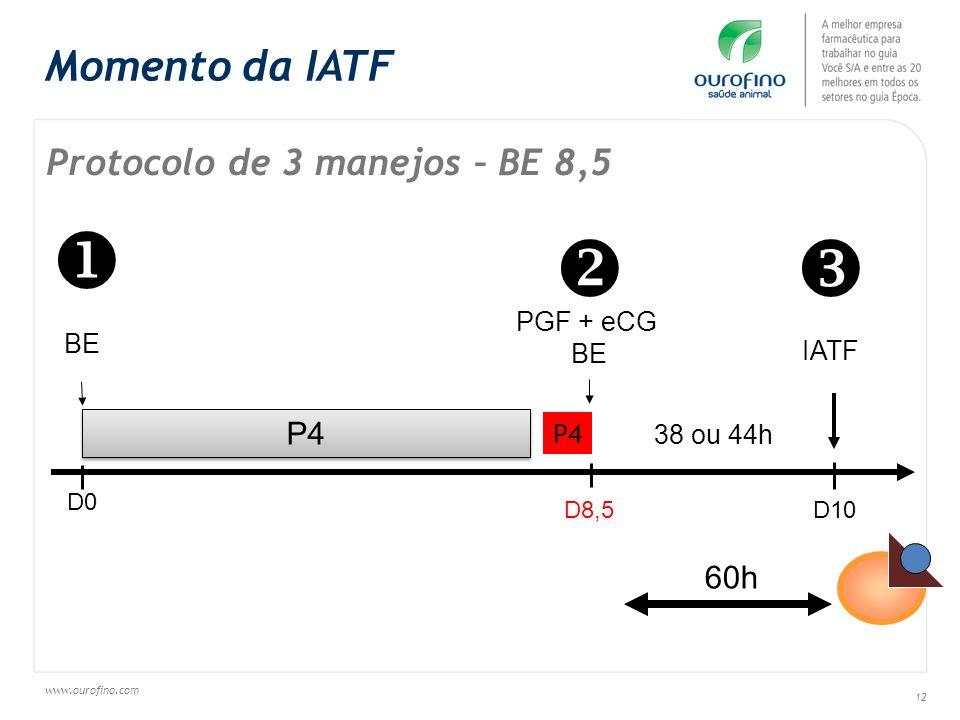 www.ourofino.com 12 Protocolo de 3 manejos – BE 8,5 60h Momento da IATF P4 BE D0 D8,5 D10 IATF 38 ou 44h PGF + eCG BE P4