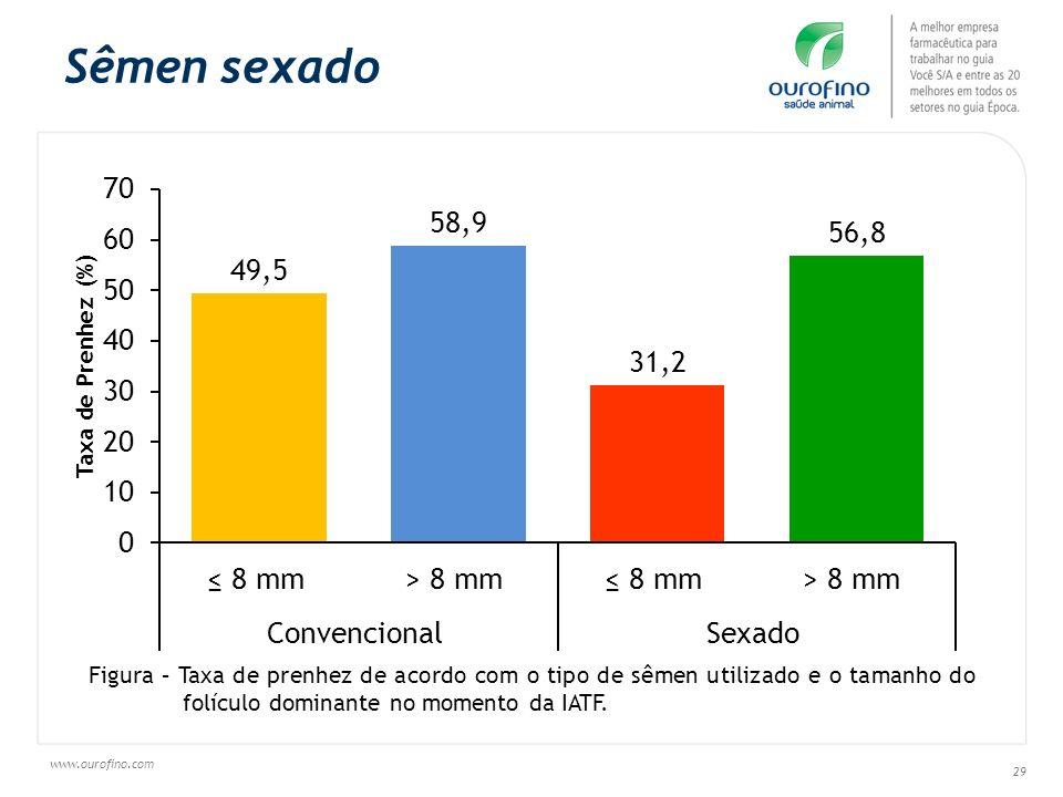 www.ourofino.com 29 Sêmen sexado Figura – Taxa de prenhez de acordo com o tipo de sêmen utilizado e o tamanho do folículo dominante no momento da IATF
