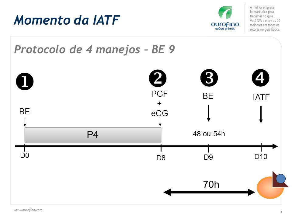 www.ourofino.com 3 Protocolo de 4 manejos – BE 9 P4 BE D0 D8 D10 IATF PGF + eCG D9 48 ou 54h BE 70h Momento da IATF