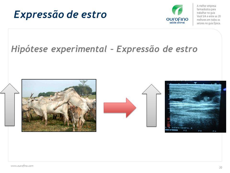 www.ourofino.com 30 Hipótese experimental – Expressão de estro Expressão de estro