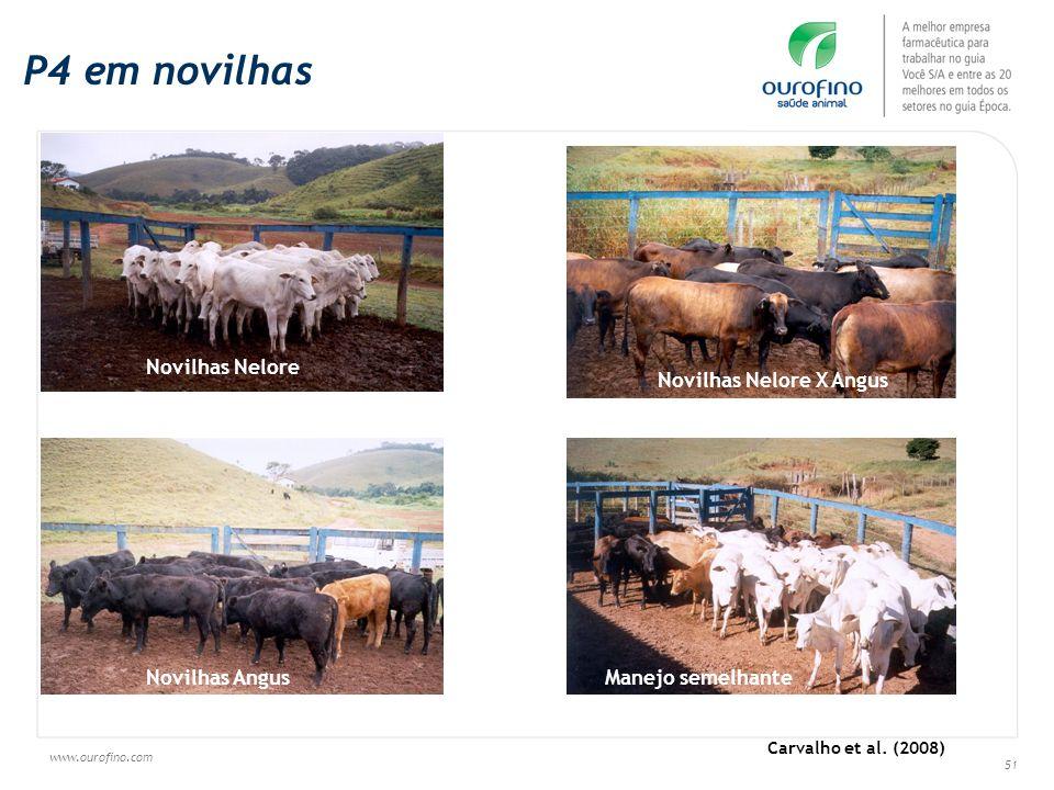 www.ourofino.com 51 Novilhas Nelore Novilhas Nelore X Angus Novilhas Angus Manejo semelhante Carvalho et al. (2008) P4 em novilhas