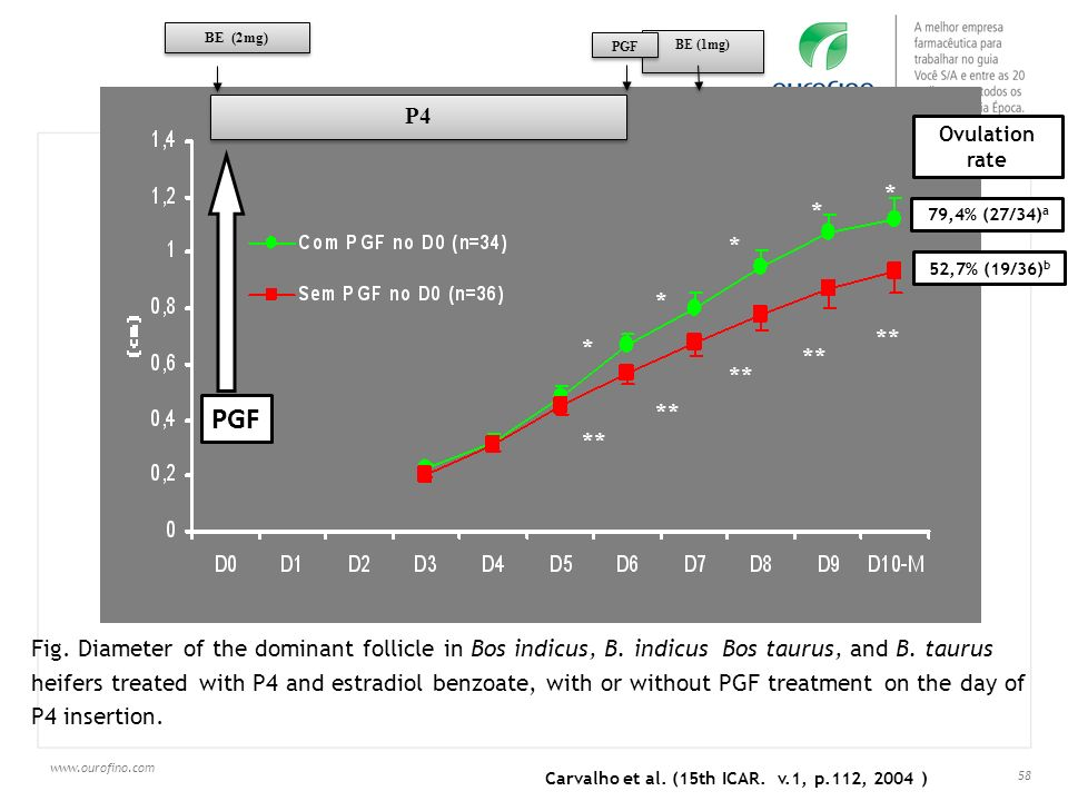 www.ourofino.com 58 * * * * * ** PGF Ovulation rate 79,4% (27/34) a 52,7% (19/36) b Carvalho et al. (15th ICAR. v.1, p.112, 2004 ) PGF Fig. Diameter o