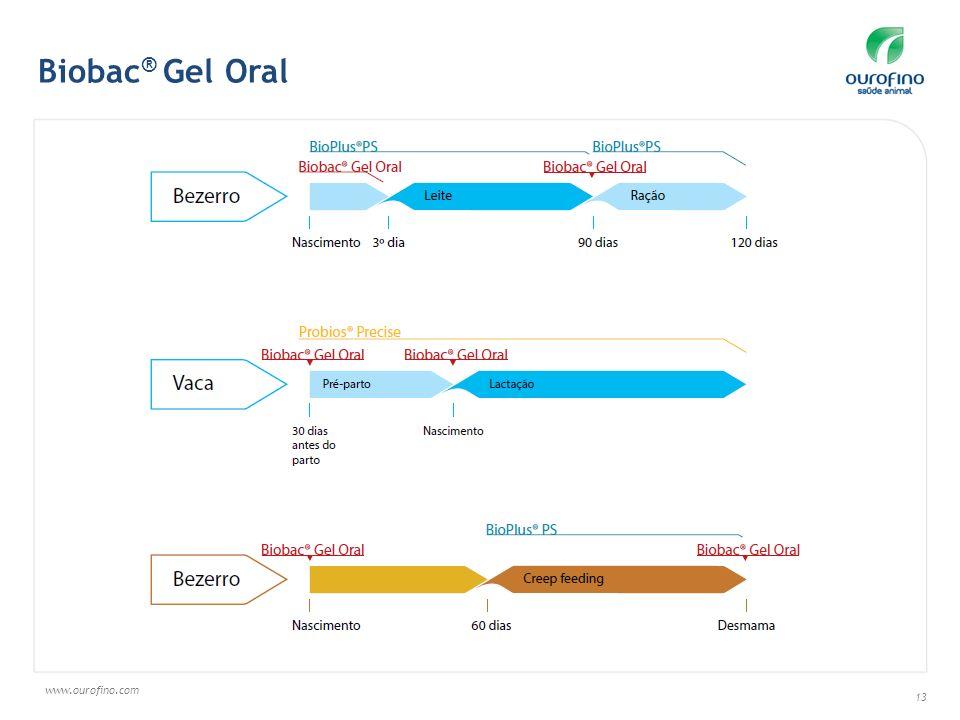 www.ourofino.com 13 Biobac ® Gel Oral