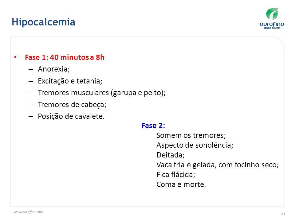www.ourofino.com 23 Fase 1: 40 minutos a 8h – Anorexia; – Excitação e tetania; – Tremores musculares (garupa e peito); – Tremores de cabeça; – Posição de cavalete.