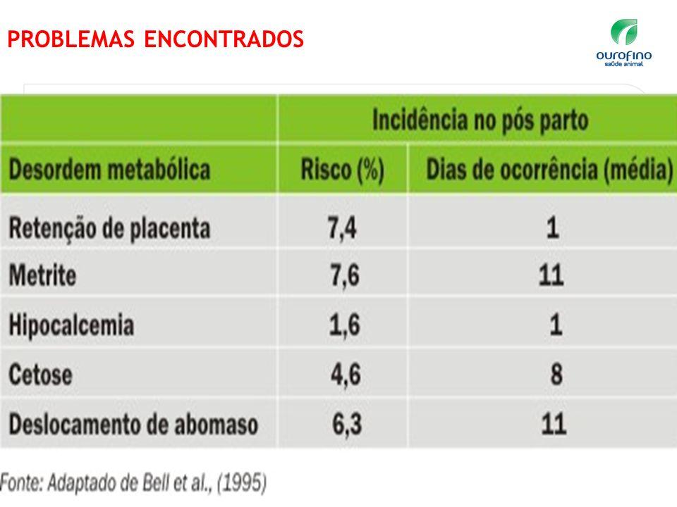 www.ourofino.com 3 PROBLEMAS ENCONTRADOS