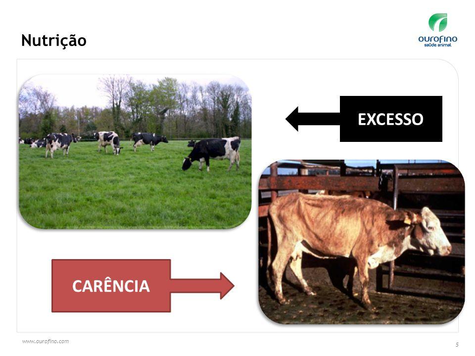 www.ourofino.com 5 Nutrição EXCESSO CARÊNCIA