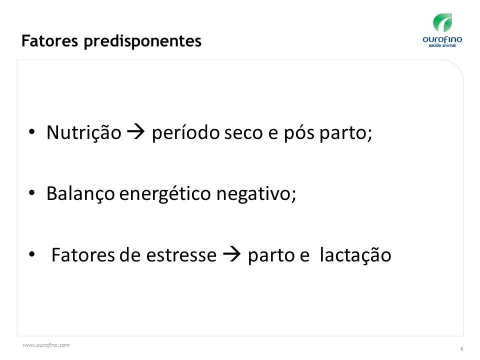 www.ourofino.com 6 Nutrição período seco e pós parto; Balanço energético negativo; Fatores de estresse parto e lactação Fatores predisponentes