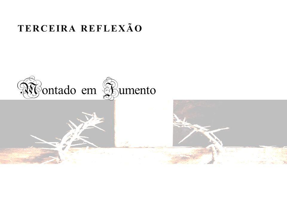 TERCEIRA REFLEXÃO M ontado em J umento