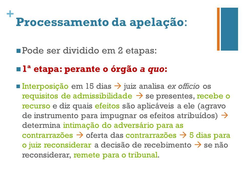 + Processamento da apelação: 2ª etapa: perante o órgão ad quem: Registro dos autos (arts.
