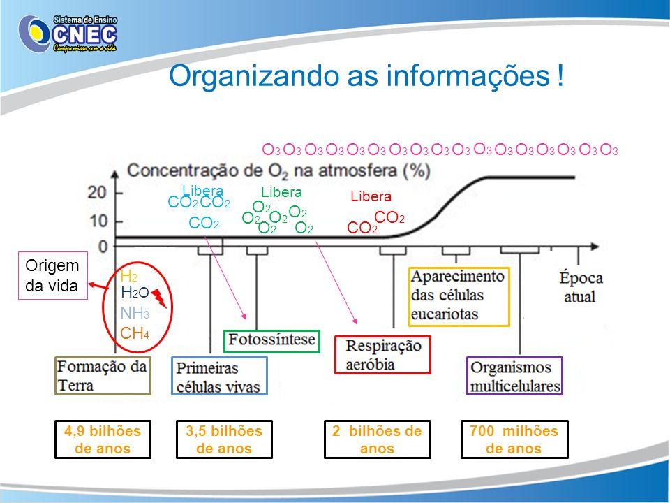 Organizando as informações ! 4,9 bilhões de anos 3,5 bilhões de anos 2 bilhões de anos 700 milhões de anos O2O2 O2O2 O2O2 O2O2 CO 2 O2O2 O2O2 CH 4 NH