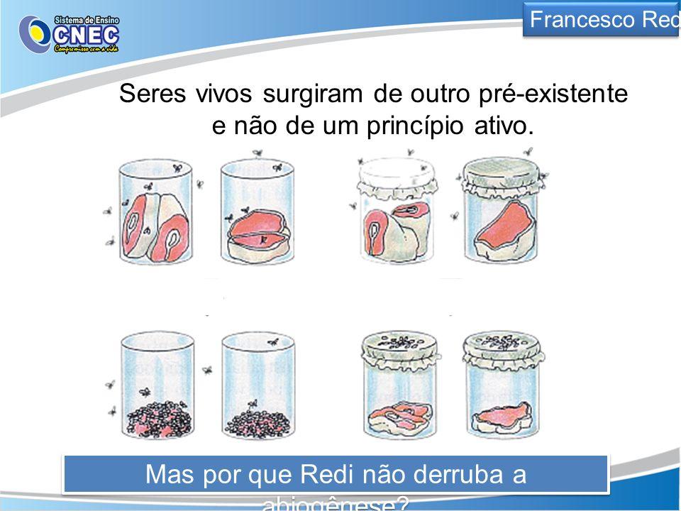 Francesco Redi Seres vivos surgiram de outro pré-existente e não de um princípio ativo. Mas por que Redi não derruba a abiogênese?