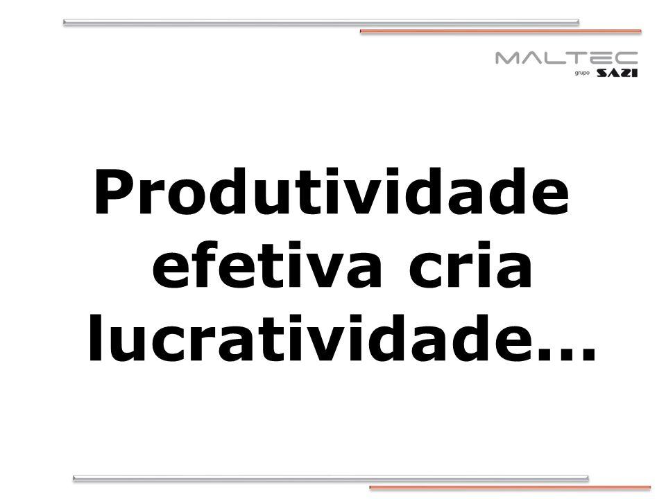 Produtividade efetiva cria lucratividade...