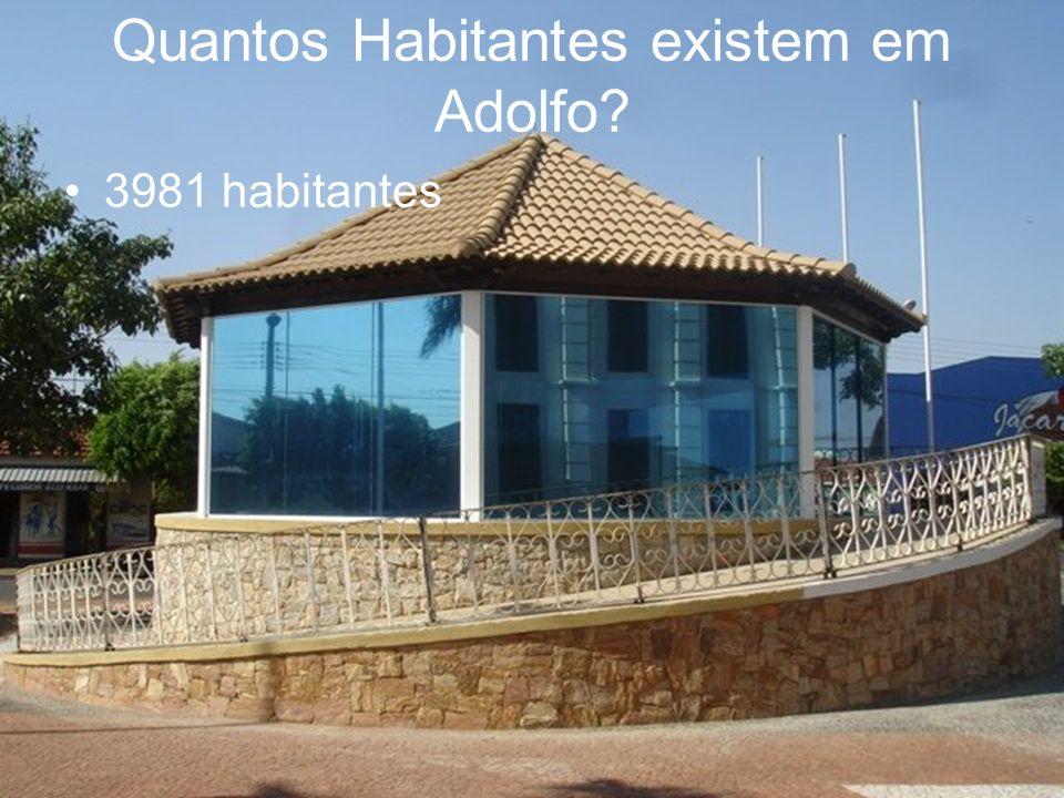 Quantos Habitantes existem em Adolfo 3981 habitantes