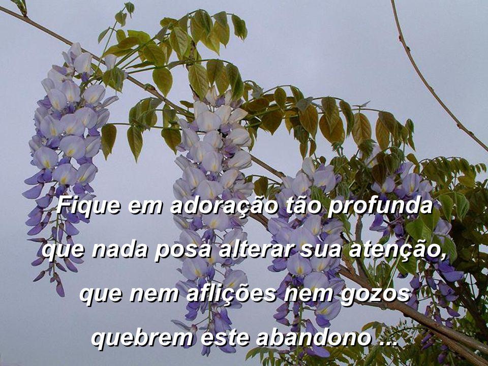 Fique sem poder, sem privil é gios, privil é gios, sem honrarias, sem í dolos, E consinta que Deus seja Deus.