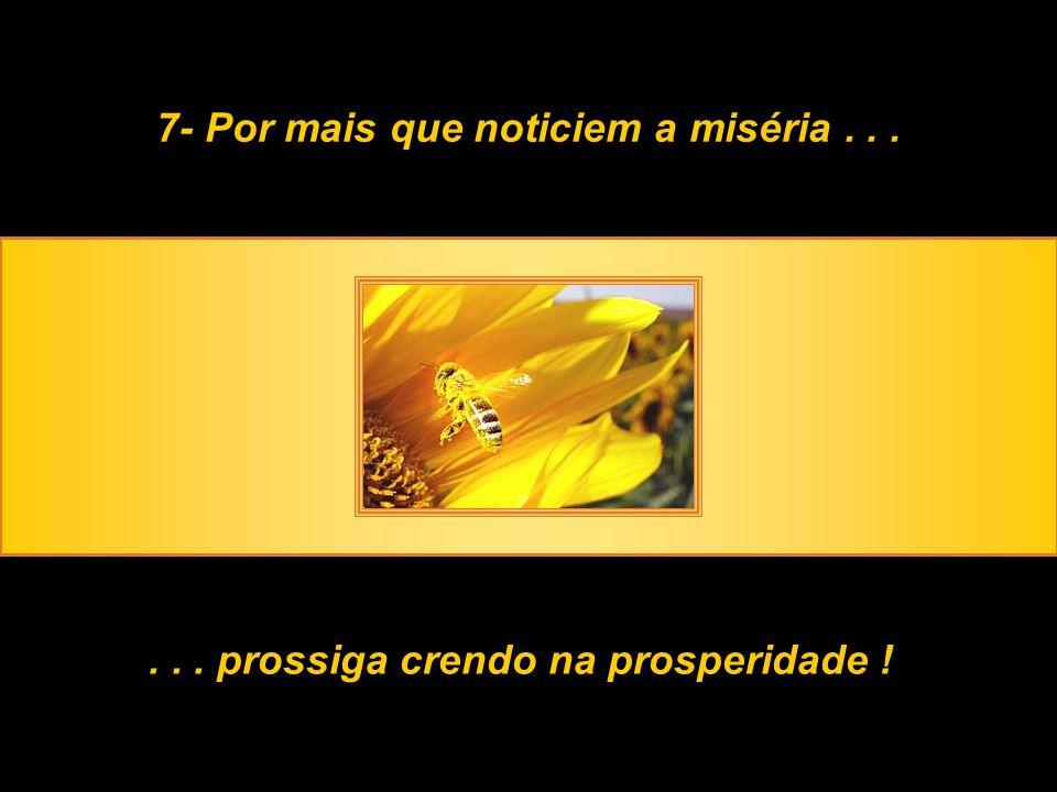 7- Por mais que noticiem a miséria...... prossiga crendo na prosperidade !