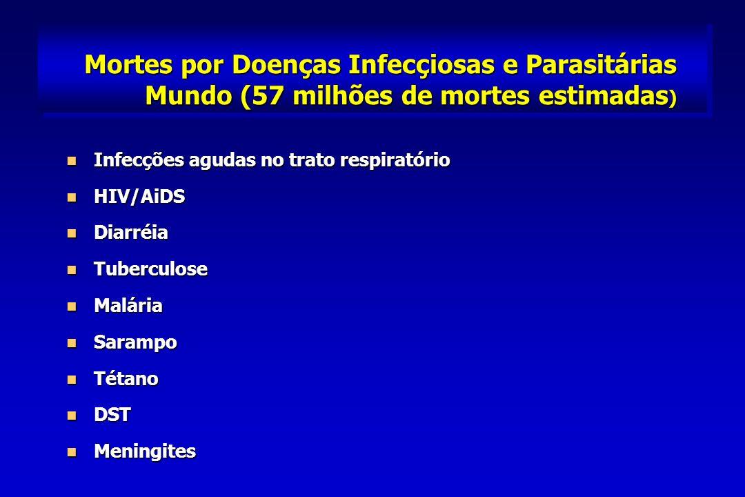 Mortes por Doenças Infecçiosas e Parasitárias Mundo (57 milhões de mortes estimadas ) Infecções agudas no trato respiratório Infecções agudas no trato respiratório HIV/AiDS HIV/AiDS Diarréia Diarréia Tuberculose Tuberculose Malária Malária Sarampo Sarampo Tétano Tétano DST DST Meningites Meningites