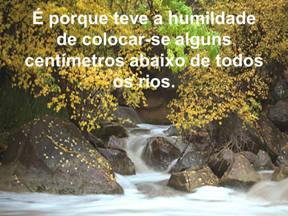 É porque teve a humildade de colocar-se alguns centímetros abaixo de todos os rios.