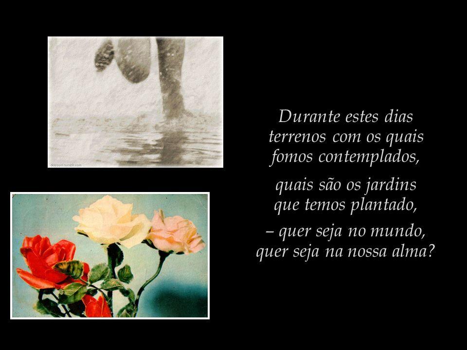 Durante estes dias terrenos com os quais fomos contemplados, quais são os jardins que temos plantado, – quer seja no mundo, quer seja na nossa alma?