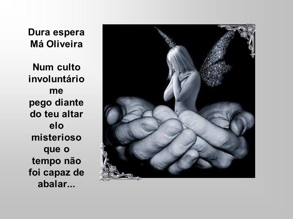 Texto: Má Oliveira edição SuelyRJ Voz: Sandra Ravanini Publicado no Recanto das Letras em 12/12/2007 Código do texto: T775020