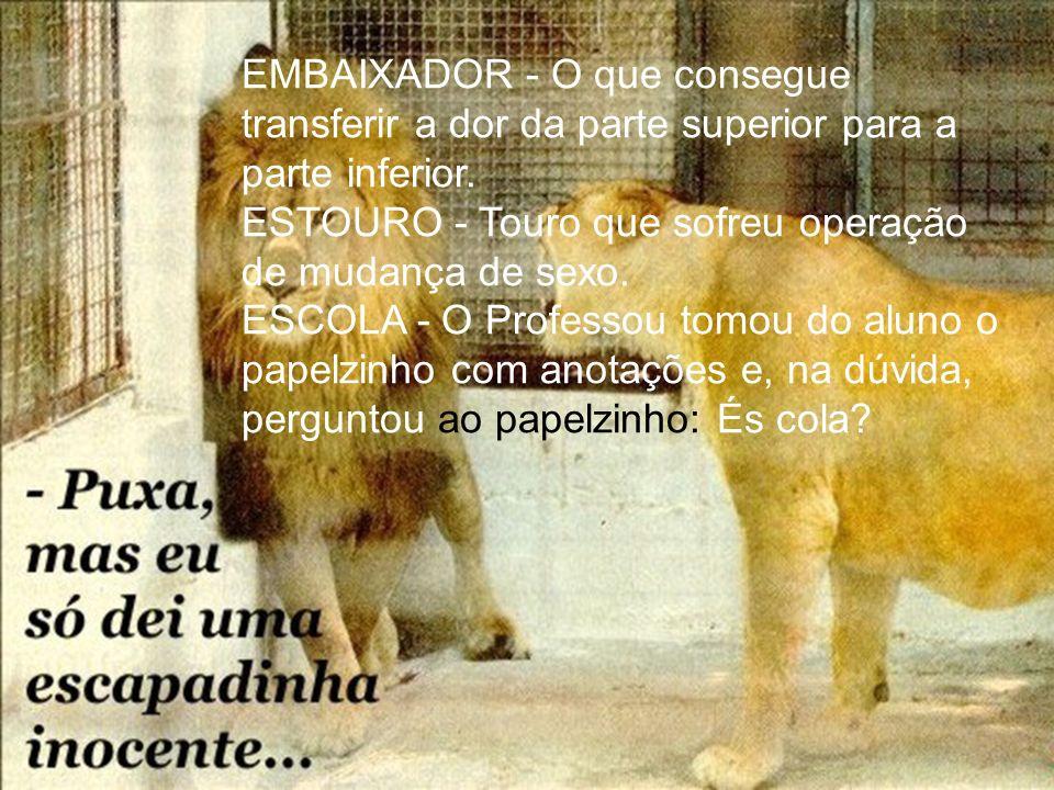 ESTÚPIDO - O sujeito que chegou de repente na casa do cego, se chama PIDO.