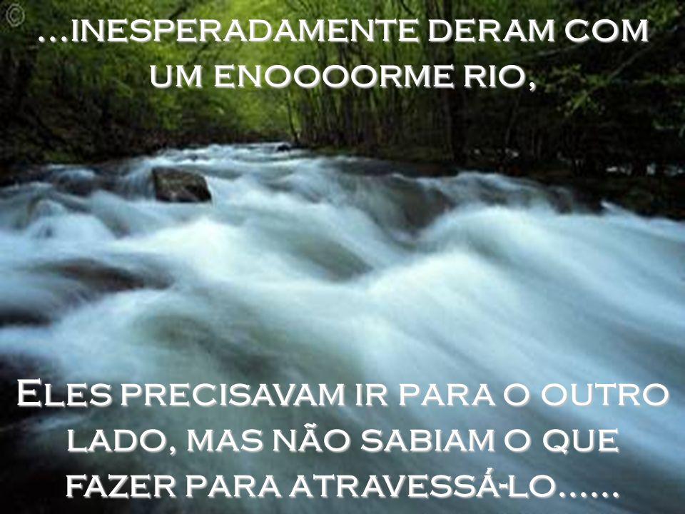 ...inesperadamente deram com um enoooorme rio, Eles precisavam ir para o outro lado, mas não sabiam o que fazer para atravessá-lo......