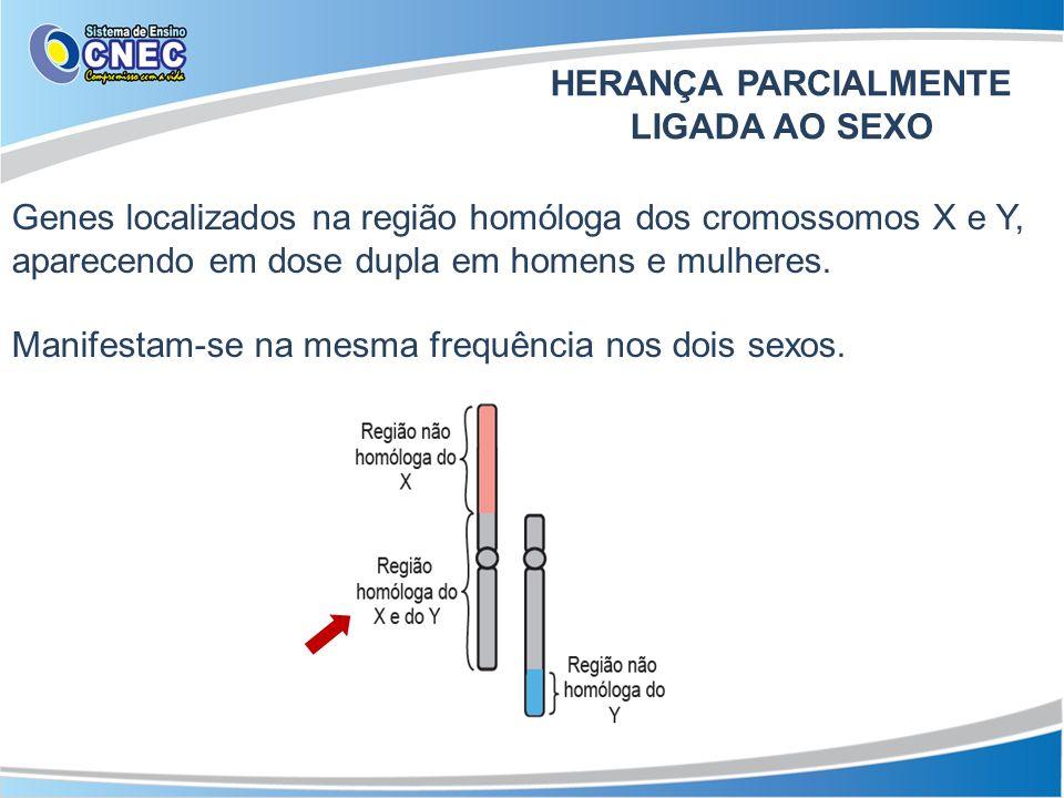 Genes localizados na região homóloga dos cromossomos X e Y, aparecendo em dose dupla em homens e mulheres. Manifestam-se na mesma frequência nos dois