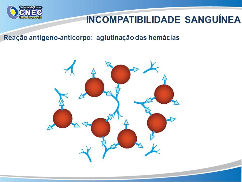 INCOMPATIBILIDADE SANGUÍNEA Reação antígeno-anticorpo: aglutinação das hemácias