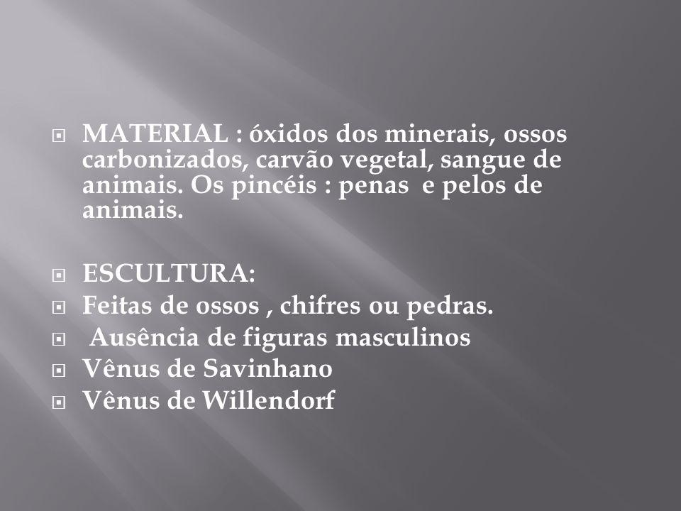 MATERIAL : óxidos dos minerais, ossos carbonizados, carvão vegetal, sangue de animais. Os pincéis : penas e pelos de animais. ESCULTURA: Feitas de oss