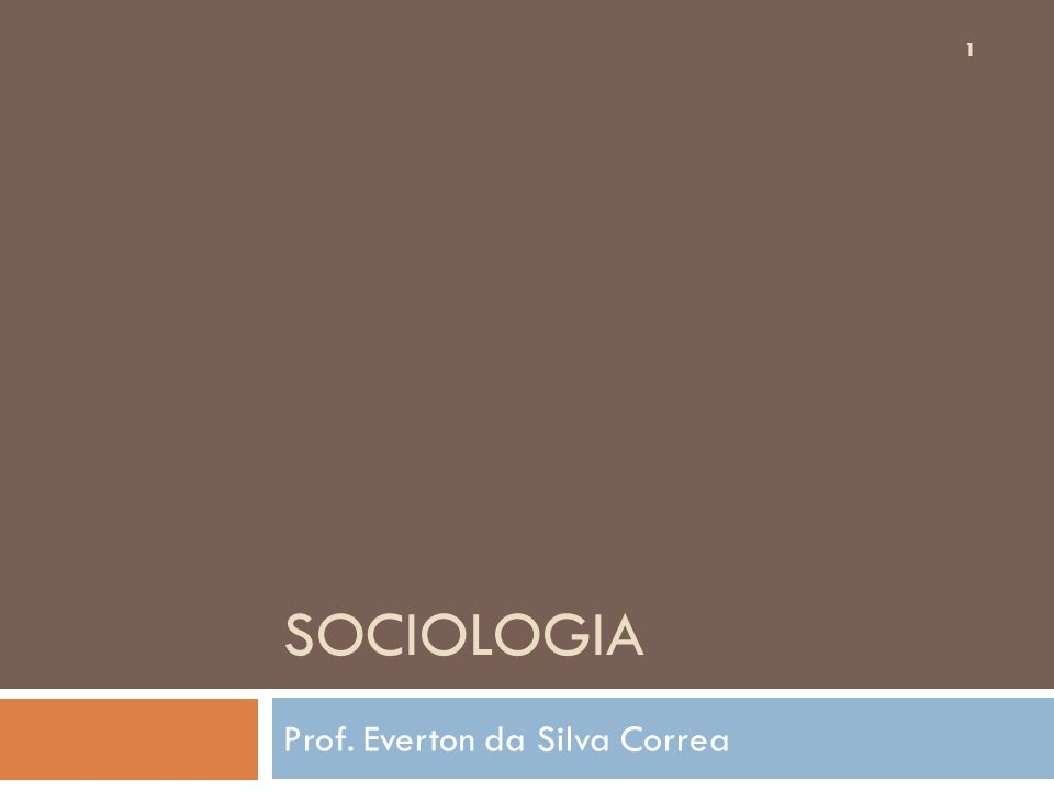 SOCIOLOGIA Prof. Everton da Silva Correa 1