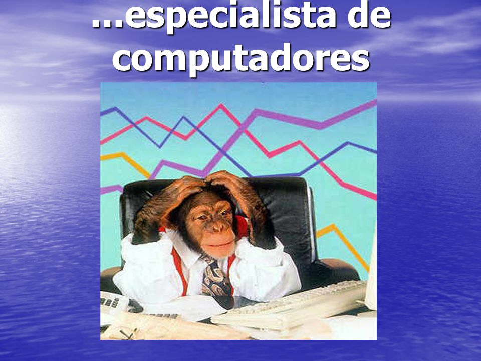 ...especialista de computadores
