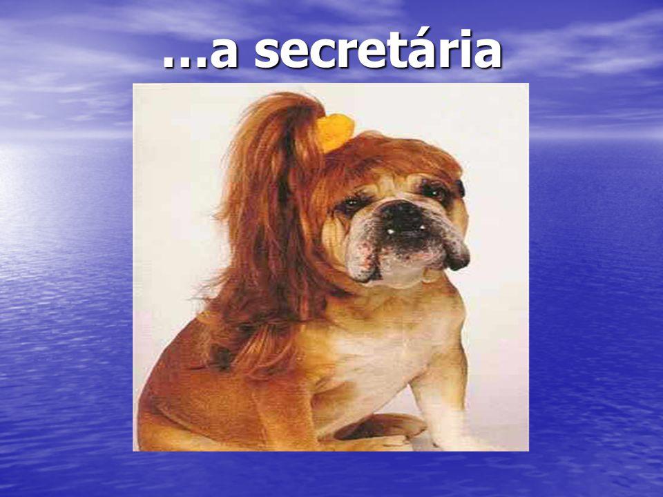 …a secretária …a secretária