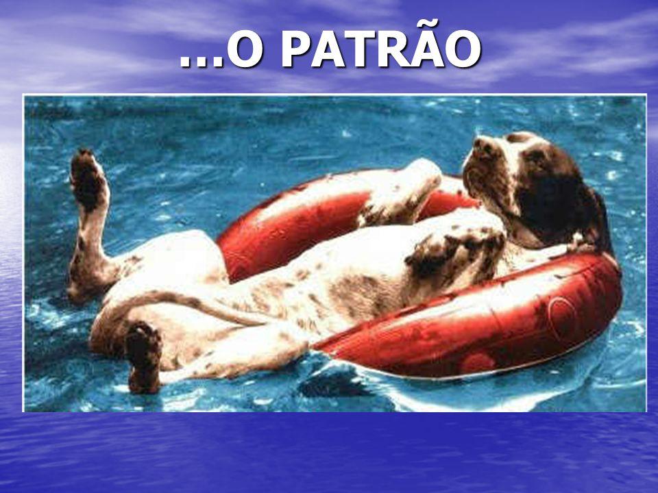 …O PATRÃO
