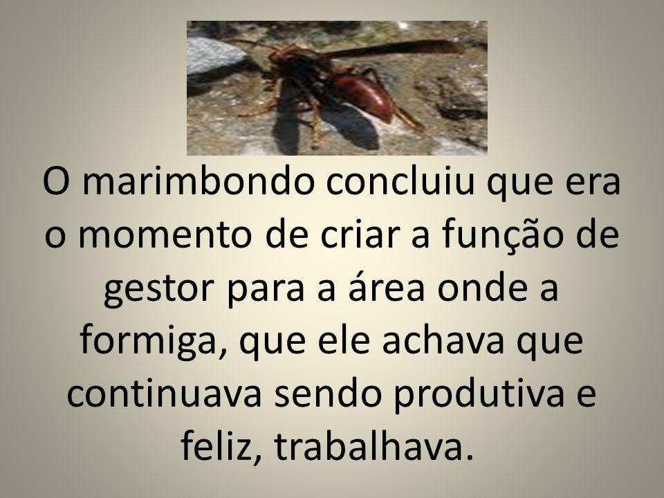 O marimbondo concluiu que era o momento de criar a função de gestor para a área onde a formiga, que ele achava que continuava sendo produtiva e feliz,