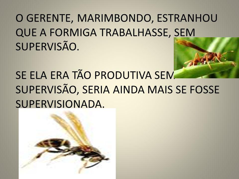 , Como a formiga já não rendia como antes, o gerente marimbondo contratou a coruja, uma prestigiada consultora, para fazer um diagnóstico da situação