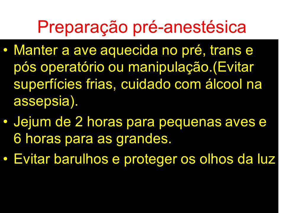Preparação pré-anestésica Manter a ave aquecida no pré, trans e pós operatório ou manipulação.(Evitar superfícies frias, cuidado com álcool na assepsi