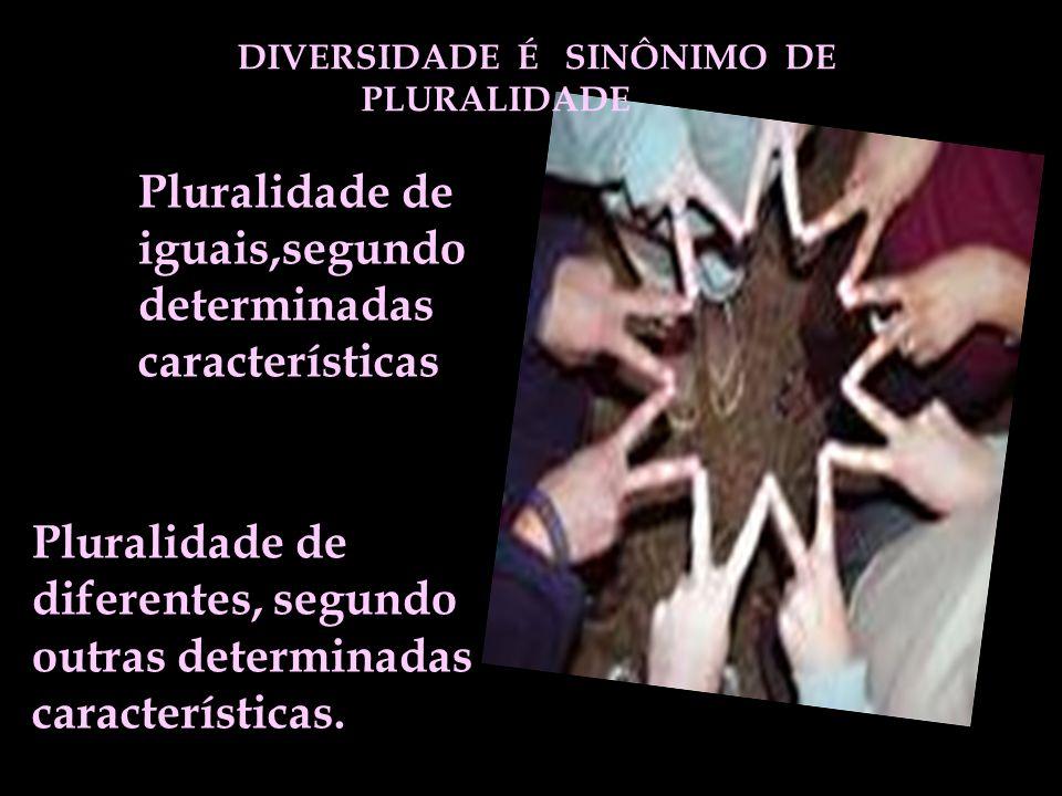 DIVERSIDADE É SINÔNIMO DE PLURALIDADE Pluralidade de iguais,segundo determinadas características Pluralidade de diferentes, segundo outras determinada