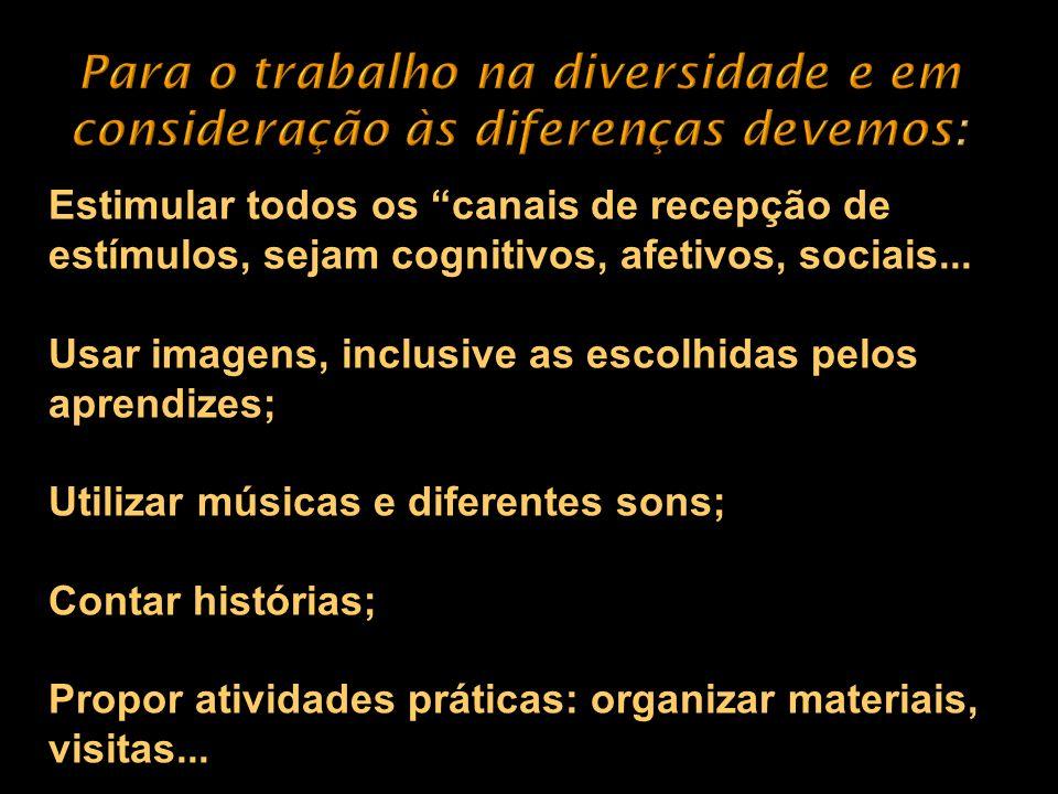 Para o trabalho na diversidade e em consideração às diferenças devemos: Estimular todos os canais de recepção de estímulos, sejam cognitivos, afetivos