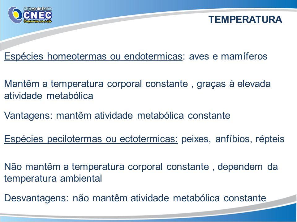 Espécies homeotermas ou endotermicas: aves e mamíferos Mantêm a temperatura corporal constante, graças à elevada atividade metabólica Vantagens: mantê