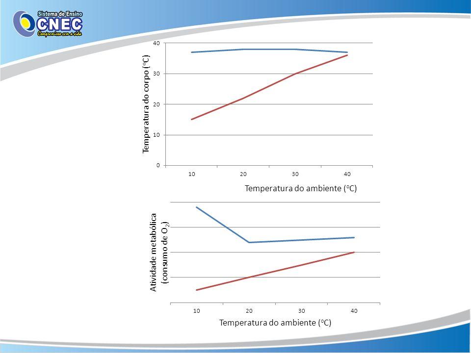Aumento da temperatura corporal Receptores da pele Hipotálamo Produção de suor, vasodilatação, menor liberação de tiroxina, liberação de ADH Menor produção de suor, tremores, piloereção, vasoconstricção, maior liberação de tiroxina Temperatura corporal (36-37 o C) Redução da temperatura corporal Receptores da pele Hipotálamo