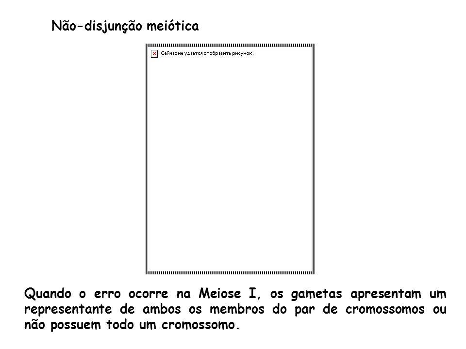 Não-disjunção meiótica Quando o erro ocorre na Meiose I, os gametas apresentam um representante de ambos os membros do par de cromossomos ou não possu