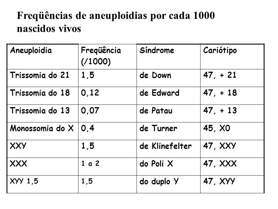 Freqüências de aneuploidias por cada 1000 nascidos vivos AneuploidiaFreqüência (/1000) SíndromeCariótipo Trissomia do 211,5de Down47, + 21 Trissomia d