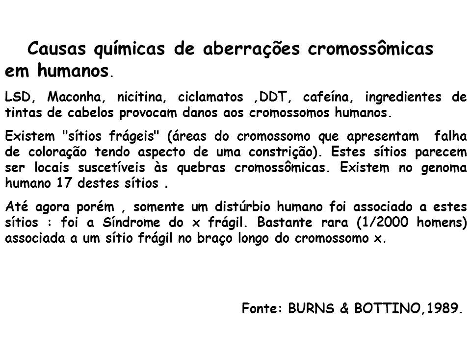 Causas químicas de aberrações cromossômicas em humanos. LSD, Maconha, nicitina, ciclamatos,DDT, cafeína, ingredientes de tintas de cabelos provocam da