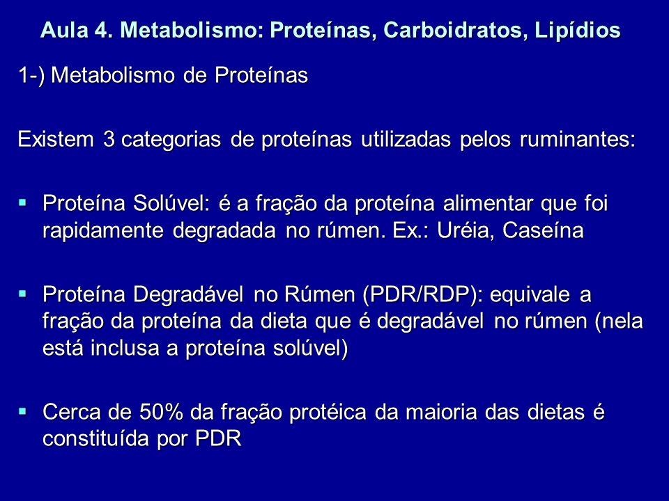 Aula 4. Metabolismo: Proteínas, Carboidratos, Lipídios 1-) Metabolismo de Proteínas Existem 3 categorias de proteínas utilizadas pelos ruminantes: Pro