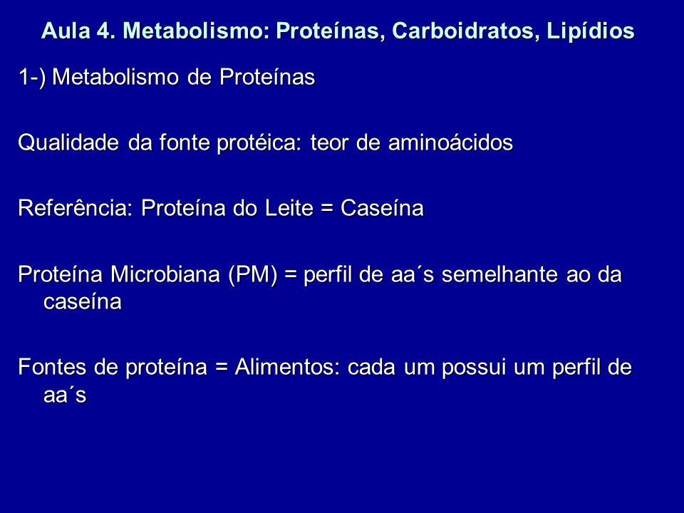 Aula 4. Metabolismo: Proteínas, Carboidratos, Lipídios 1-) Metabolismo de Proteínas Qualidade da fonte protéica: teor de aminoácidos Referência: Prote