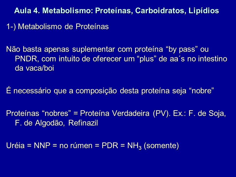Aula 4. Metabolismo: Proteínas, Carboidratos, Lipídios 1-) Metabolismo de Proteínas Não basta apenas suplementar com proteína by pass ou PNDR, com int
