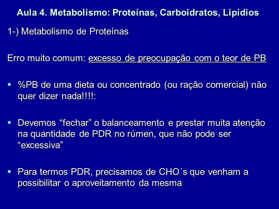 Aula 4. Metabolismo: Proteínas, Carboidratos, Lipídios 1-) Metabolismo de Proteínas Erro muito comum: excesso de preocupação com o teor de PB %PB de u