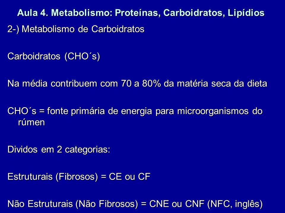 Aula 4. Metabolismo: Proteínas, Carboidratos, Lipídios 2-) Metabolismo de Carboidratos Carboidratos (CHO´s) Na média contribuem com 70 a 80% da matéri
