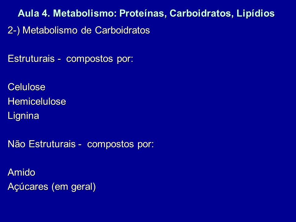 Aula 4. Metabolismo: Proteínas, Carboidratos, Lipídios 2-) Metabolismo de Carboidratos Estruturais - compostos por: CeluloseHemiceluloseLignina Não Es