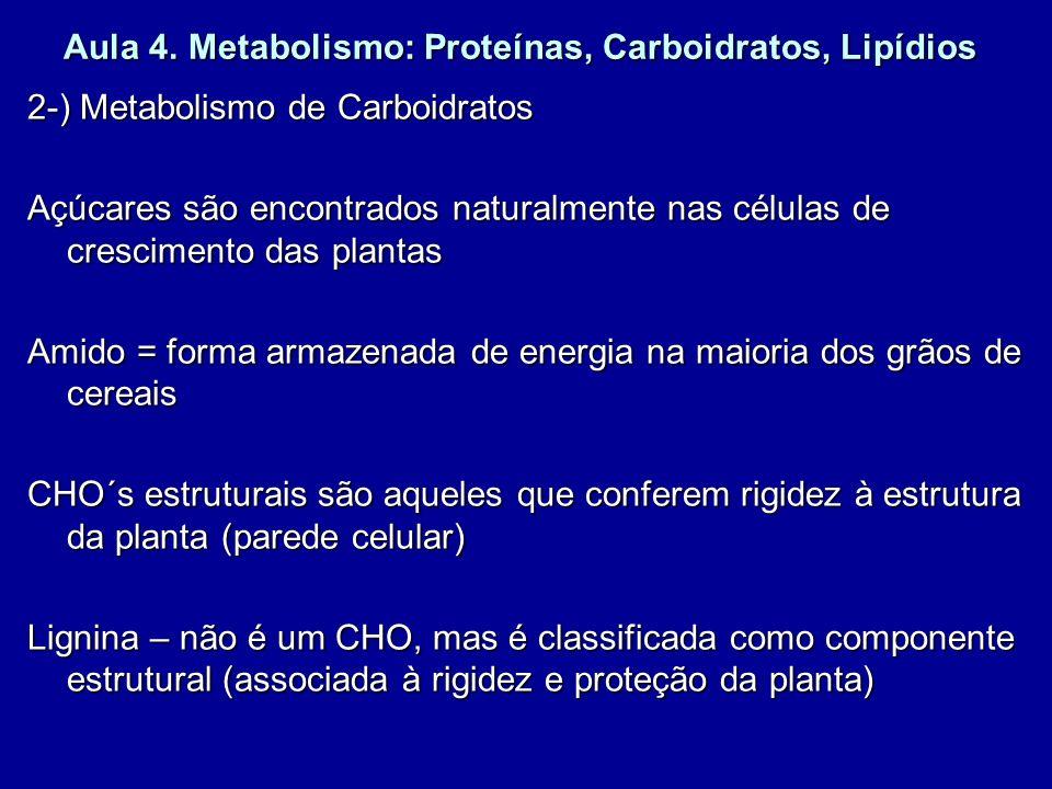 Aula 4. Metabolismo: Proteínas, Carboidratos, Lipídios 2-) Metabolismo de Carboidratos Açúcares são encontrados naturalmente nas células de cresciment